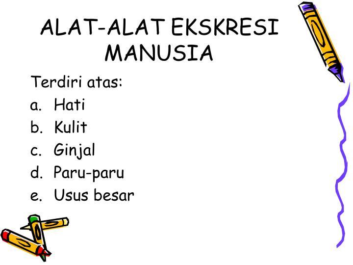 ALAT-ALAT EKSKRESI MANUSIA