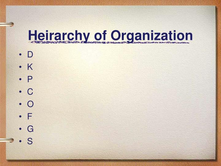 Heirarchy of Organization