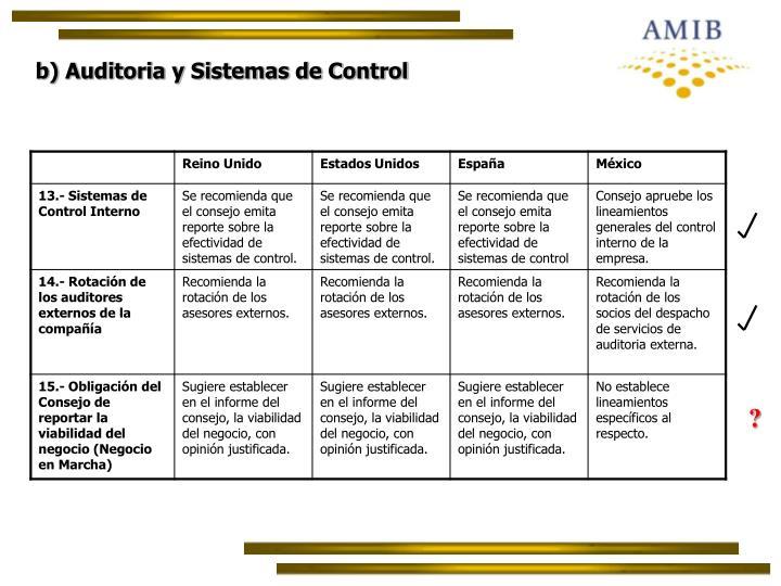 b) Auditoria y Sistemas de Control