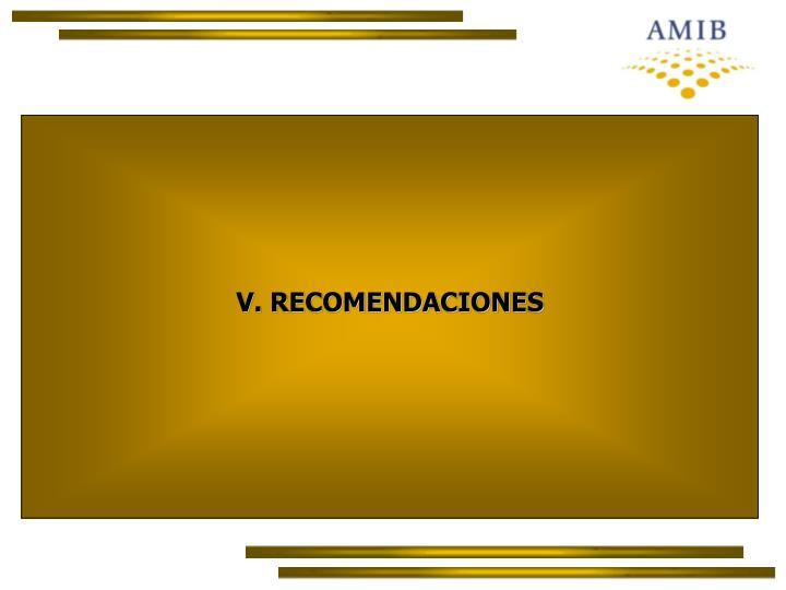 V. RECOMENDACIONES