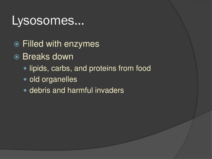 Lysosomes…