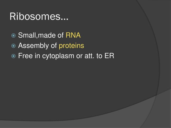Ribosomes…