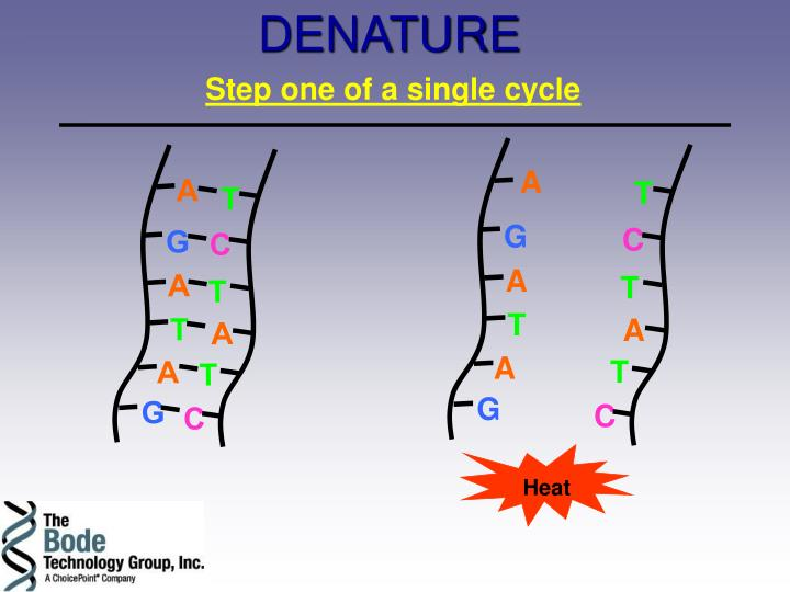 DENATURE