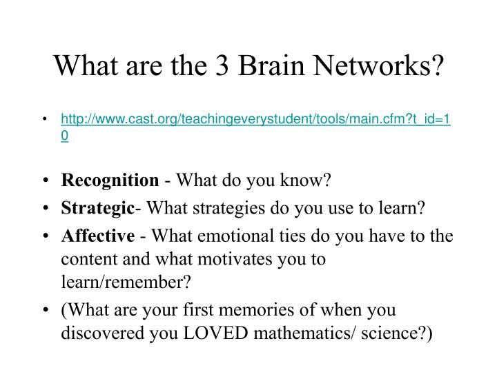 What are the 3 Brain Networks?