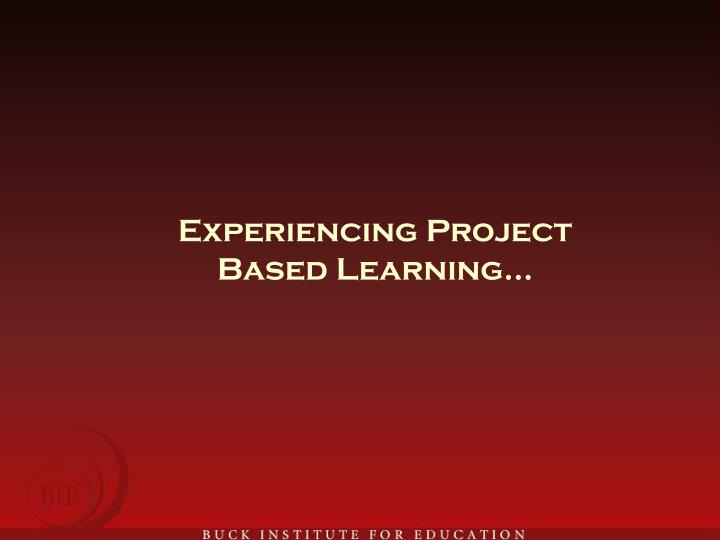 Experiencing Project Based Learning…