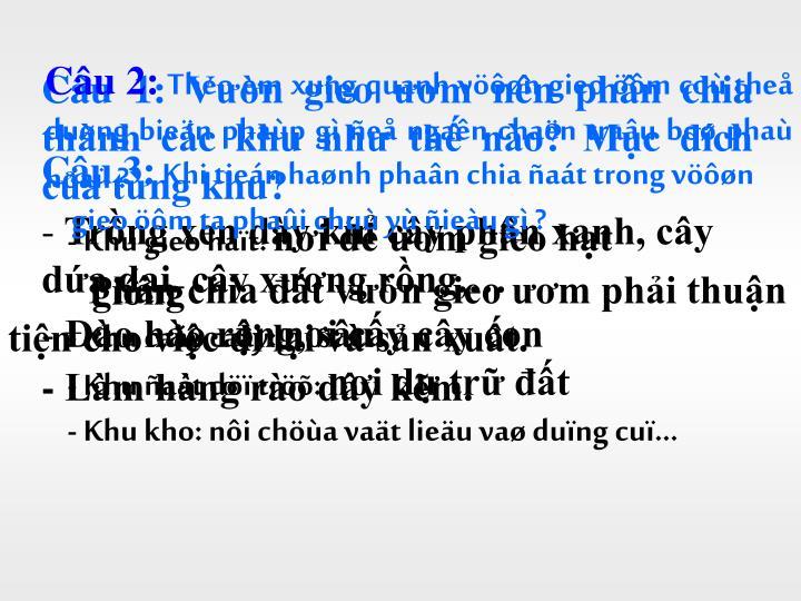 Câu 2: