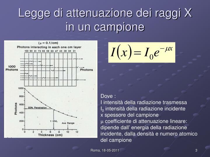 Legge di attenuazione dei raggi X in un campione