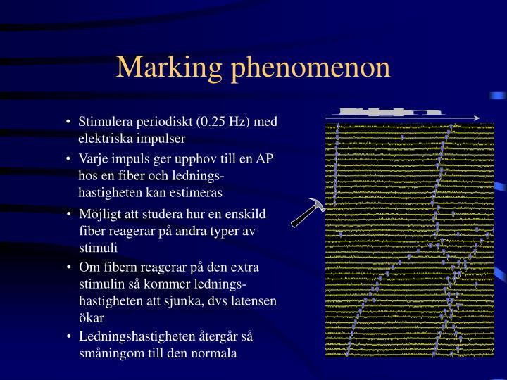 Marking phenomenon