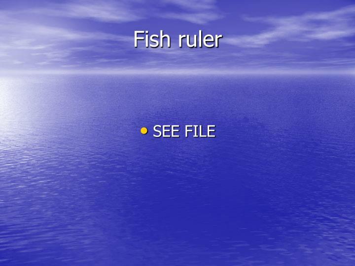 Fish ruler
