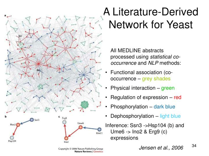 A Literature-Derived Network for Yeast