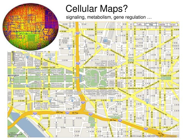 Cellular Maps?