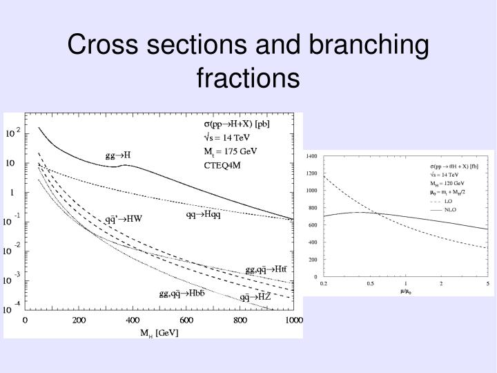 Cross sections and branching fractions