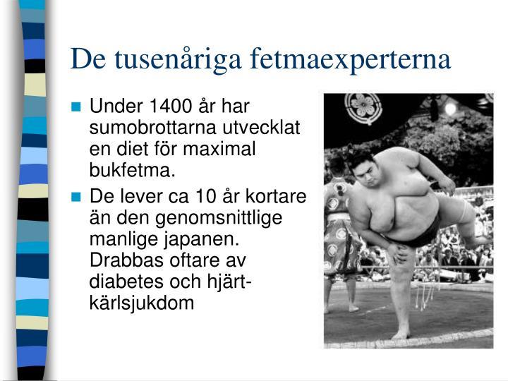 De tusenåriga fetmaexperterna