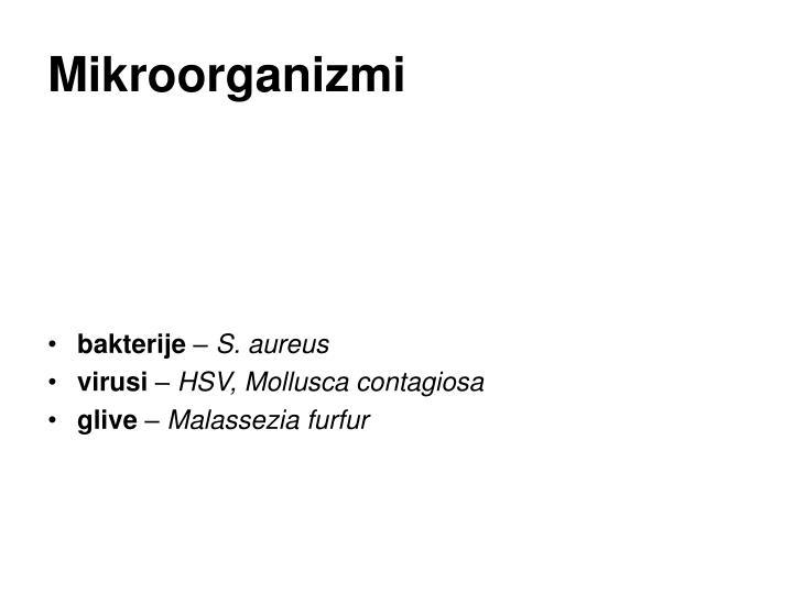 Mikroorganizmi