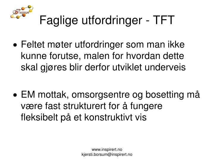 Faglige utfordringer - TFT