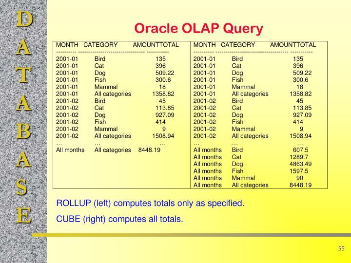 Oracle OLAP Query