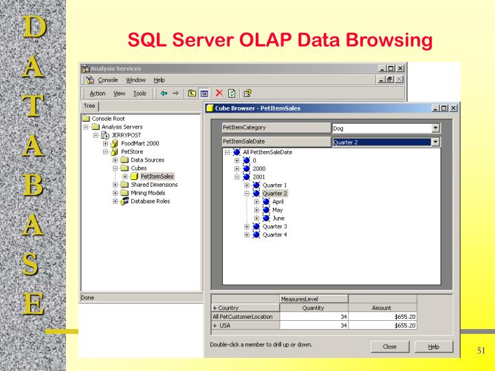 SQL Server OLAP Data Browsing