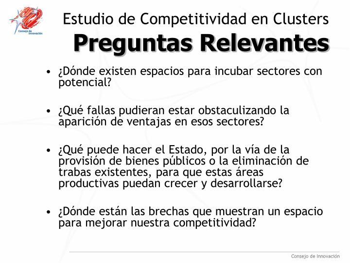 Estudio de Competitividad en Clusters