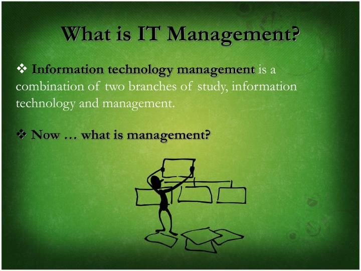 What is IT Management?