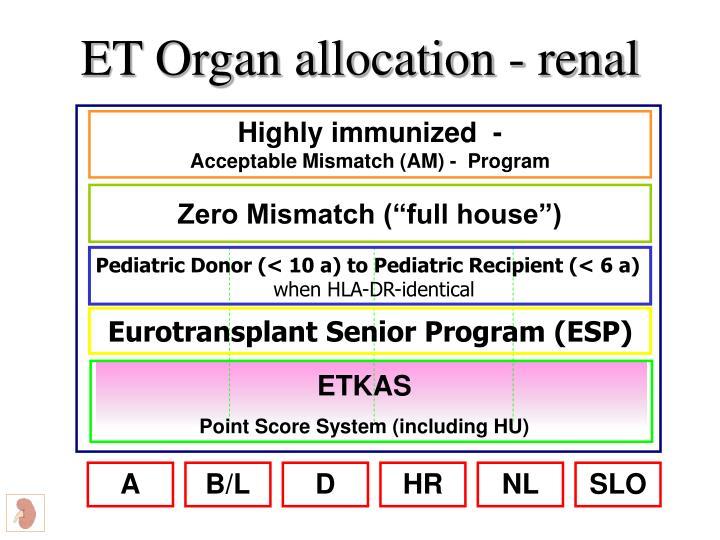 ET Organ allocation - renal