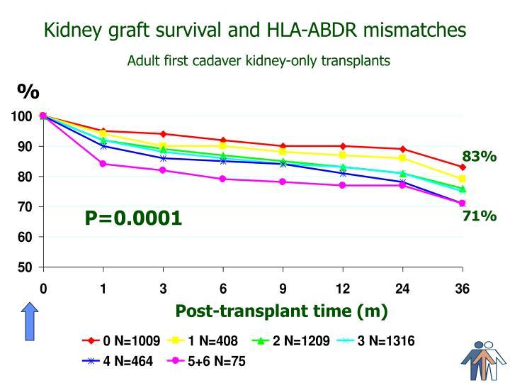 Kidney graft survival and HLA-ABDR mismatches