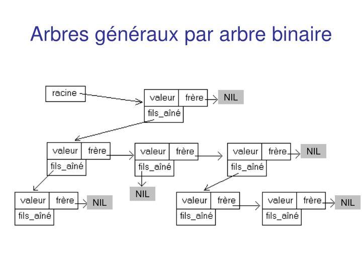 Arbres généraux par arbre binaire