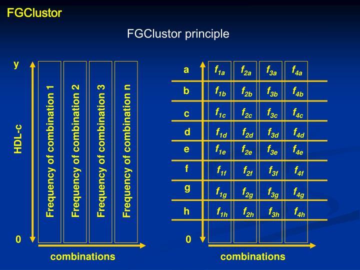 FGClustor