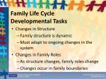 family life cycle developmental tasks