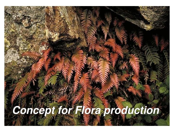 Concept for Flora production