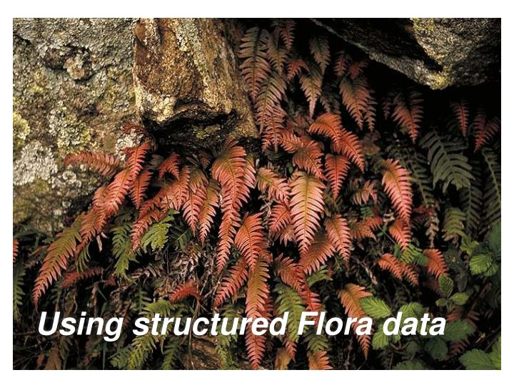 Using structured Flora data