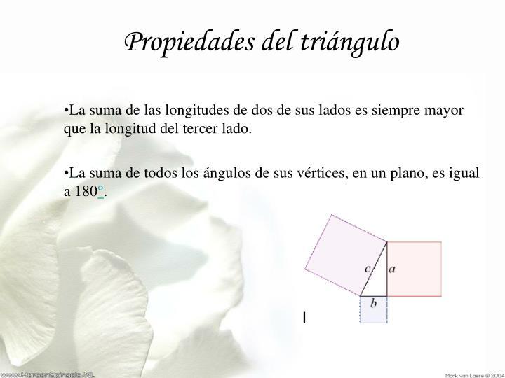 Propiedades del triángulo
