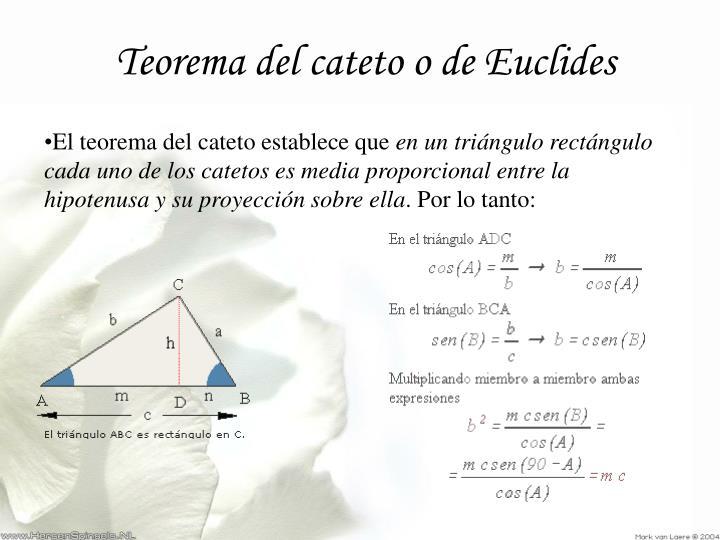 Teorema del cateto o de Euclides