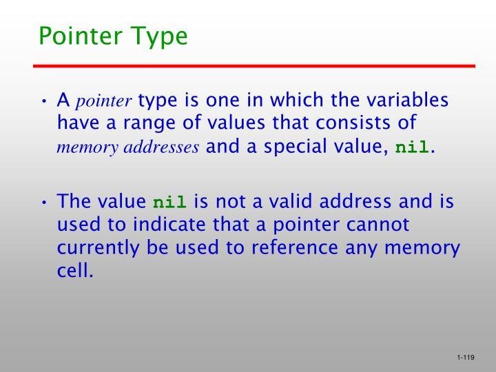 Pointer Type