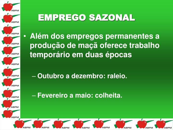 Além dos empregos permanentes a produção de maçã oferece trabalho temporário em duas épocas