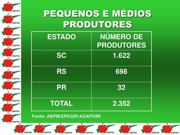 PEQUENOS E MÉDIOS PRODUTORES
