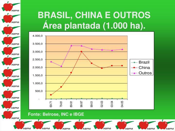 BRASIL, CHINA E OUTROS Área plantada (1.000 ha).