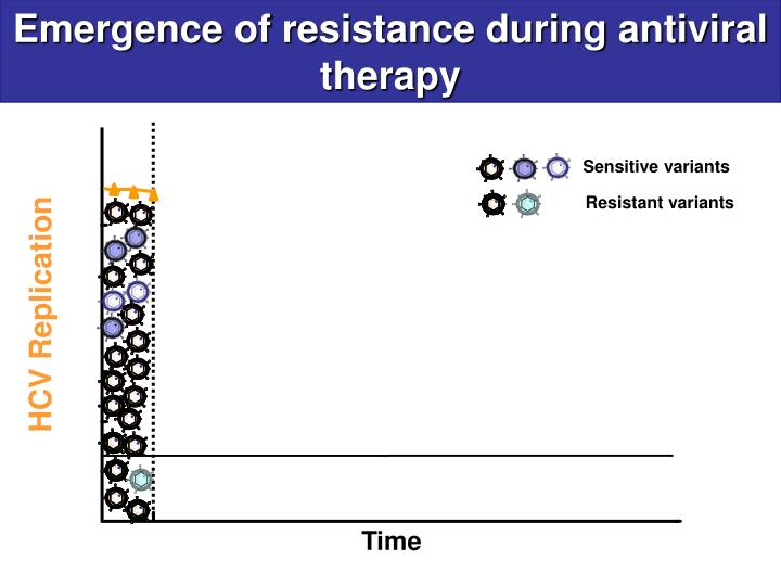 Emergence of resistance during antiviral therapy