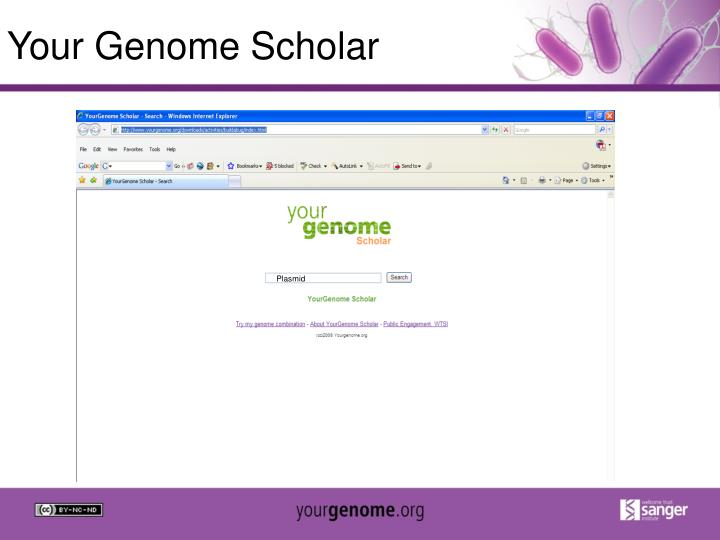 Your Genome Scholar