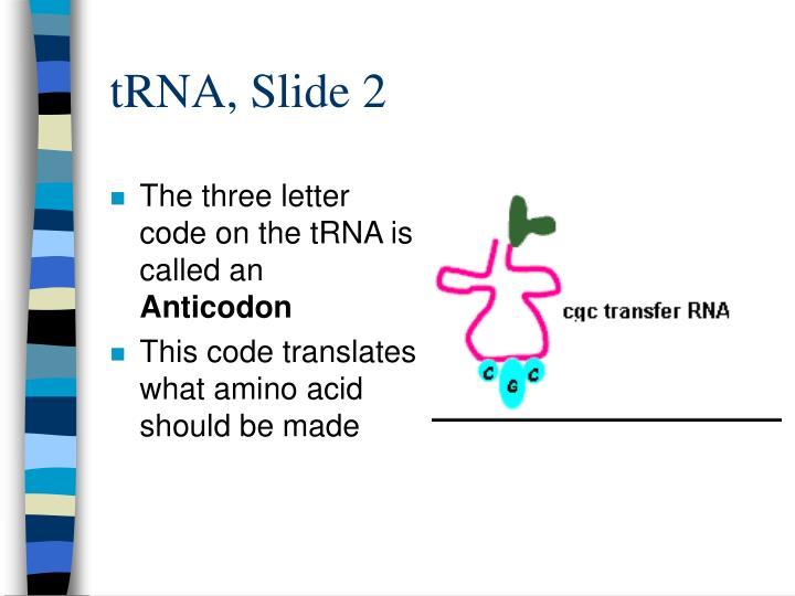 tRNA, Slide 2