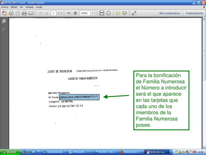 Para la bonificación de Familia Numerosa el Número a introducir será el que aparece en las tarjetas que cada uno de los miembros de la  Familia Numerosa posee.