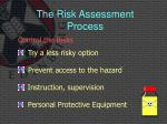 the risk assessment process6