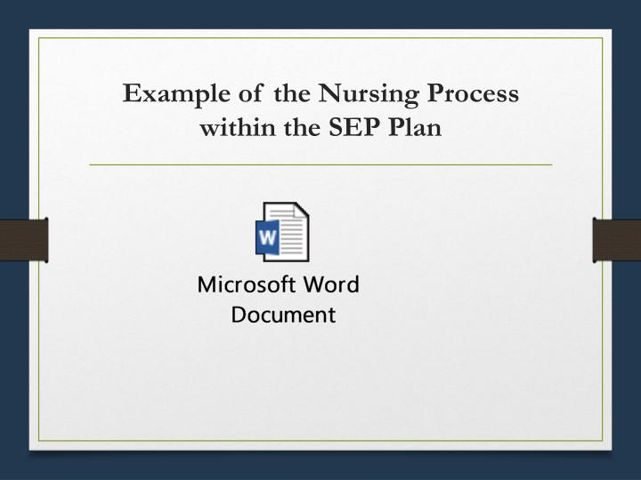 Example of the Nursing Process within the SEP Plan