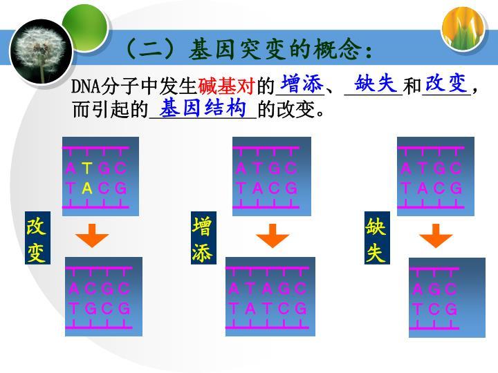 (二)基因突变的概念: