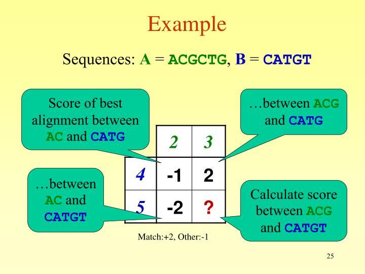 Score of best alignment between