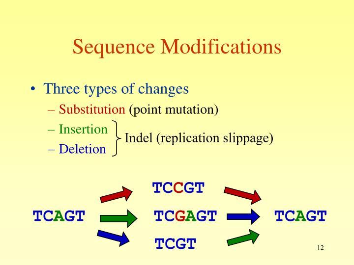 Indel (replication slippage)