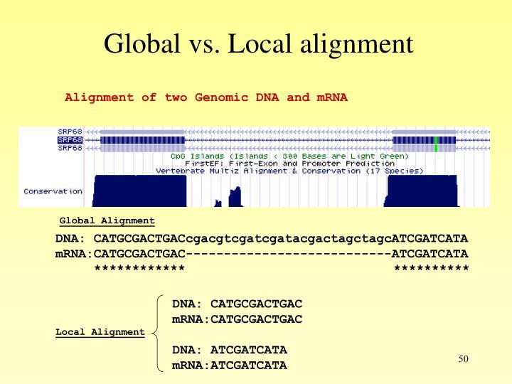 Global vs. Local alignment