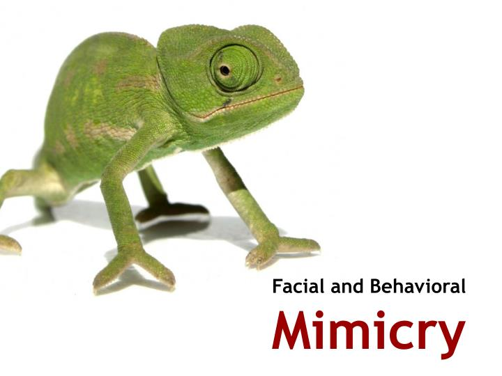 Facial and Behavioral
