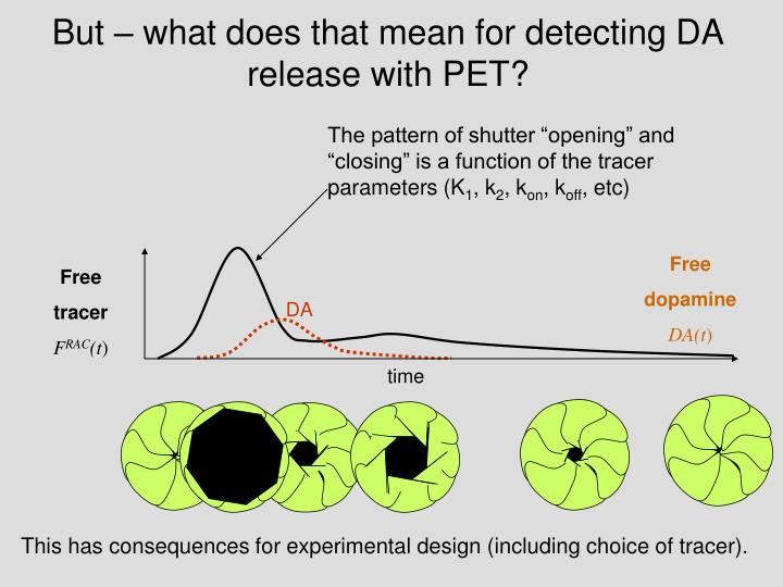 But – what does that mean for detecting DA release with PET?