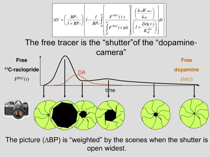 """The free tracer is the """"shutter""""of the """"dopamine-camera"""""""