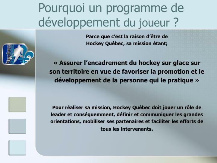 Pourquoi un programme de développement